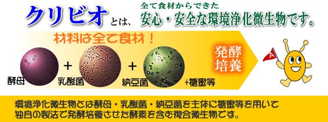 えひめAI-1は安全安心な環境浄化微生物です。