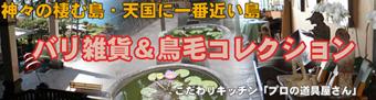 バリ雑貨(鳥毛清喜他)