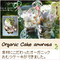 オーガニックのおむつケーキ