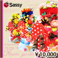 sassy(サッシー)ケアセット付き3段
