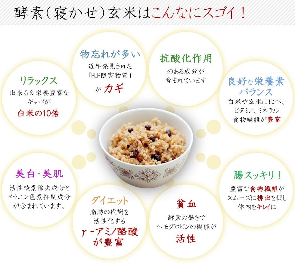 酵素玄米・寝かせ玄米は、物忘れ改善、抗酸化作用、栄養バランス、腸内改善、貧血改善、ダイエット、美白・美肌、リラックス効果