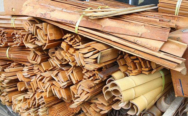 竹の生育に適した気候