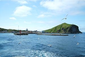 礼文島の海とカモメ