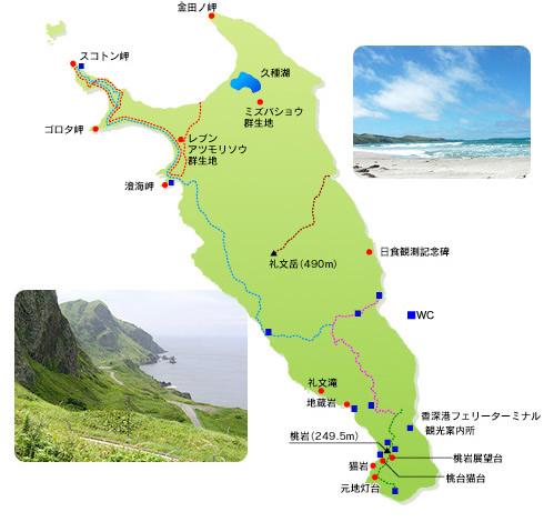 礼文花散策マップ