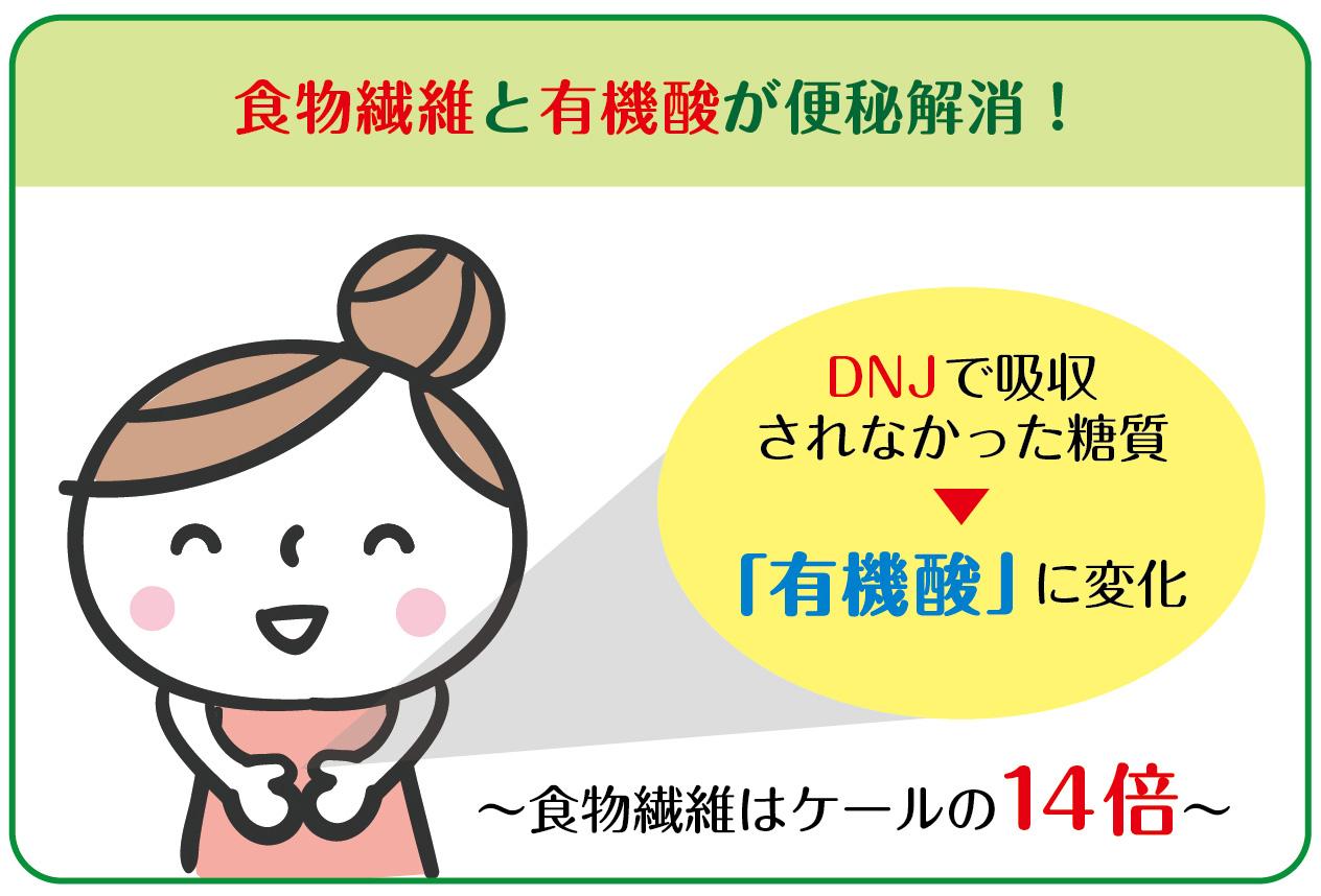 DNJ 有機酸 脂質 ケール