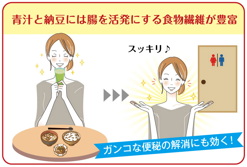 青汁と納豆には腸を活発にする食物繊維が豊富