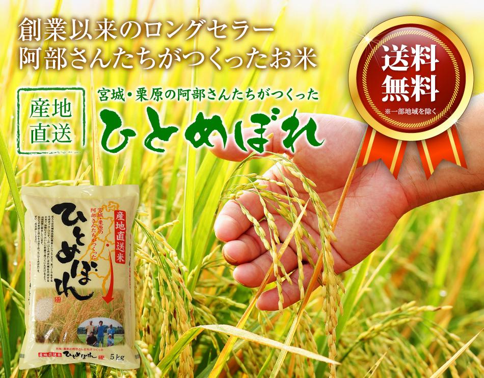 米,10kg,送料無料,ひとめぼれ,10キロ,宮城県産,阿部さんたちがつくったひとめぼれ