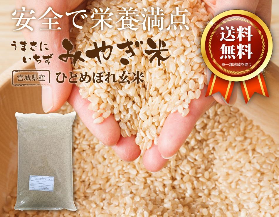 みやぎ米ひとめぼれ玄米