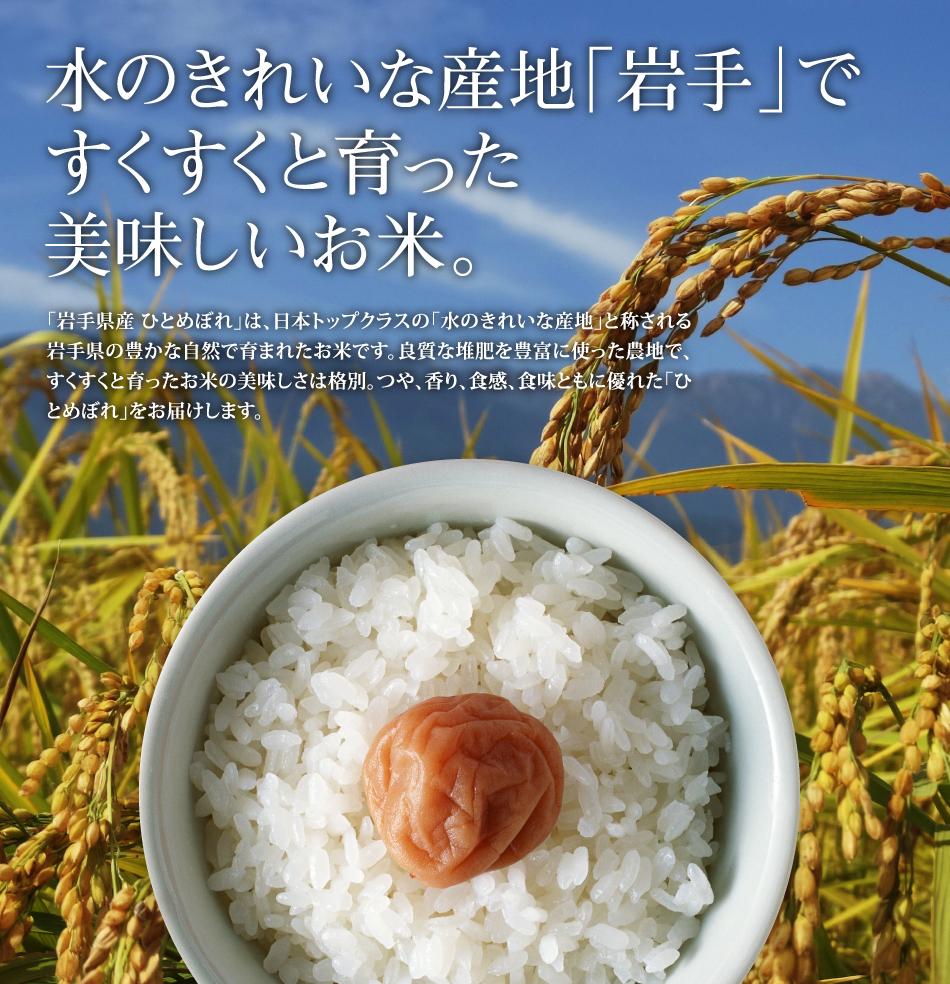 米,5kg,ひとめぼれ,岩手県産,送料無料,令和元年産,美味しいお米