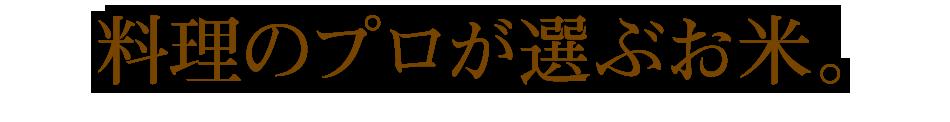 米,20kg,ササニシキ,宮城県産,送料無料,令和元年産,料理のプロが選ぶお米