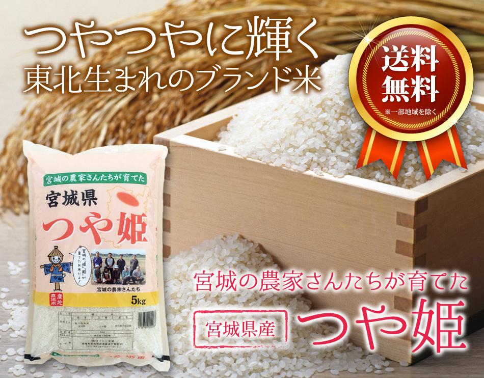 米,10kg,つや姫,宮城県産,送料無料,令和元年産,つやつやに輝く東北生まれのブランド米