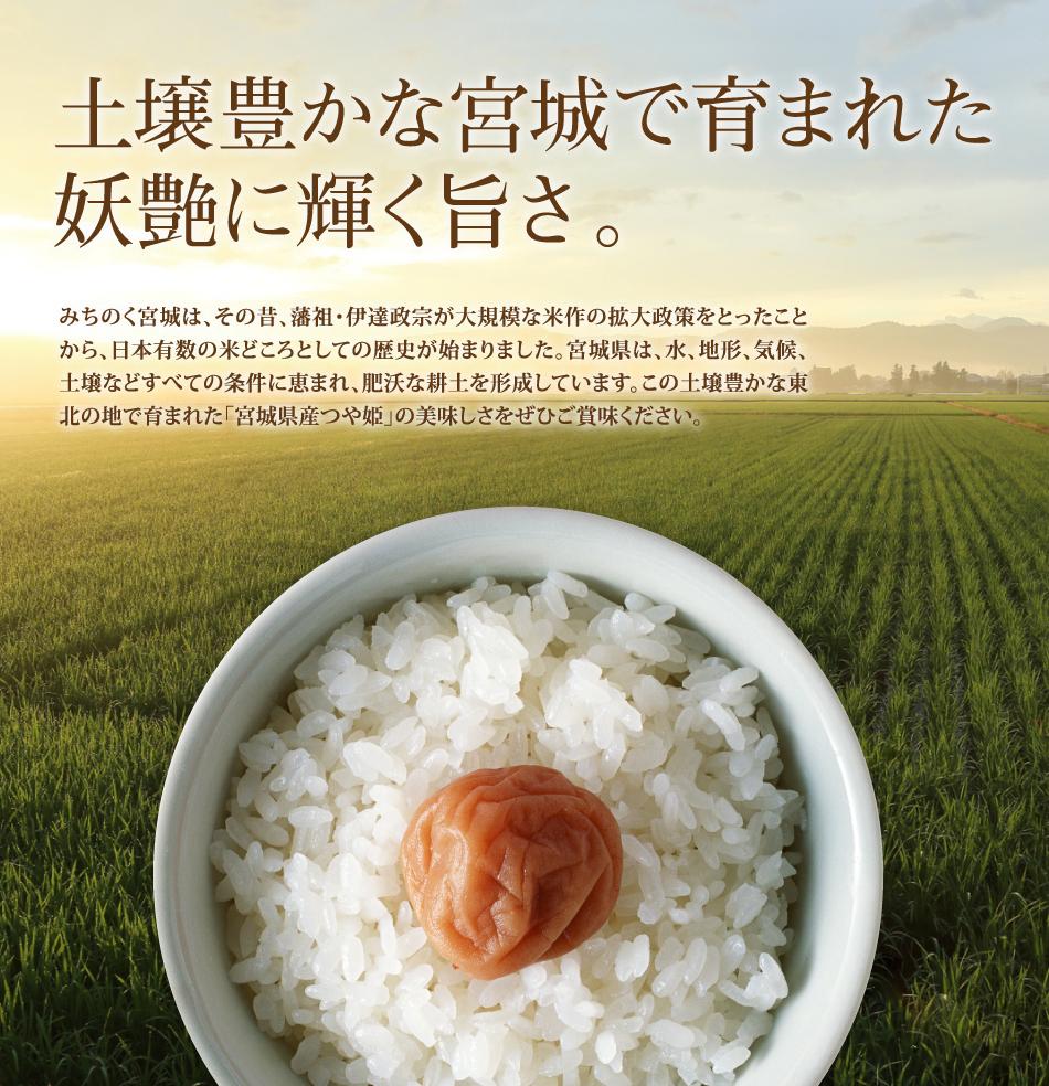 米,10kg,つや姫,宮城県産,送料無料,令和元年産,妖艶に輝く旨さ