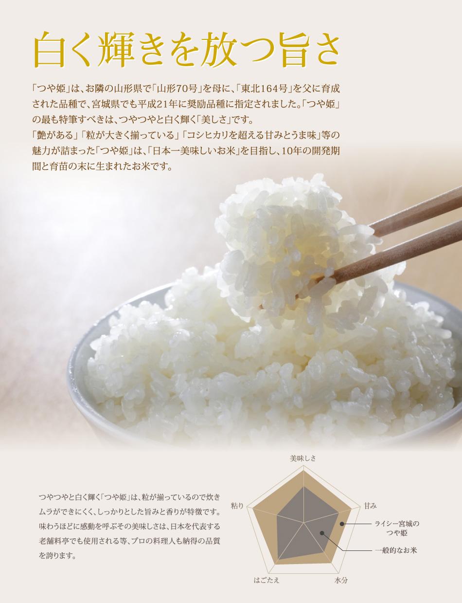 米,10kg,つや姫,宮城県産,送料無料,令和元年産,白く輝く旨さ