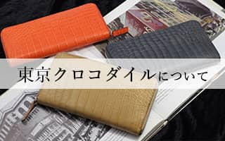 東京クロコダイルについて