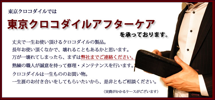 東京クロコダイルのアフターケア
