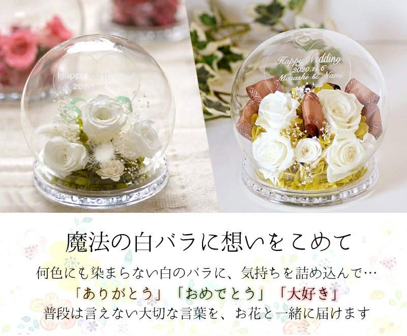 魔法の白バラ