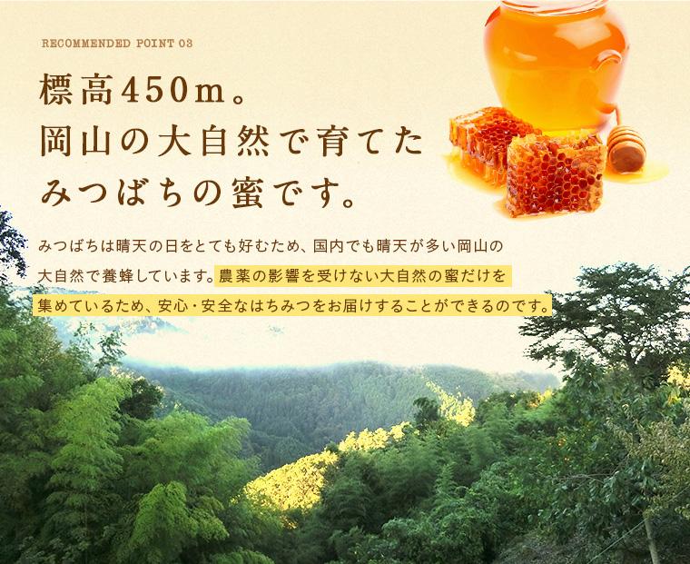 みつばちの蜜です