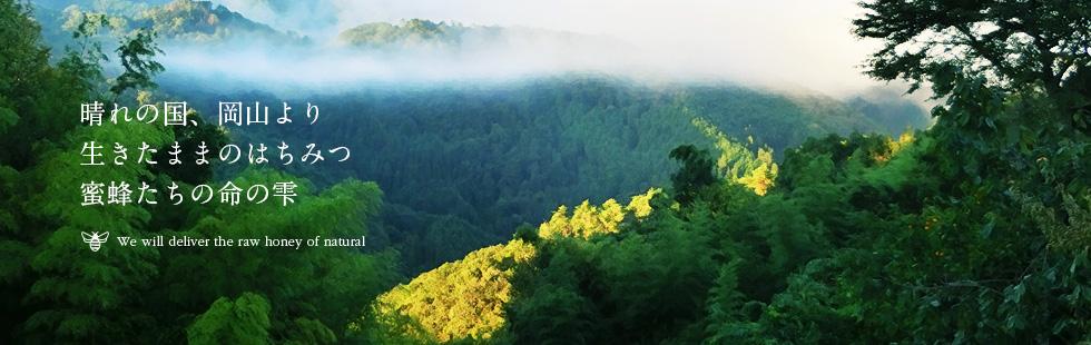 晴れの国、岡山より生きたままのはちみつ蜜蜂たちの命の雫