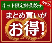 ネット限定野菜餃子【期間限定】まとめ買いがお得!