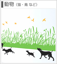 ウォールステッカー 動物(猫・鳥など)