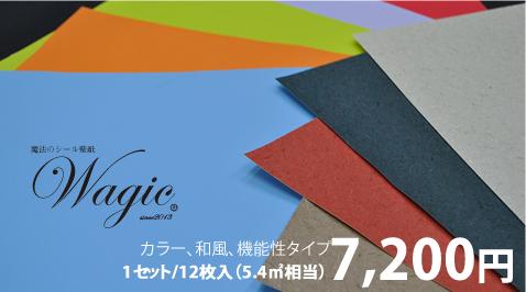 通常4980円wagic