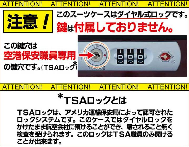 TSA��å��б�