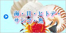 海・貝・ヒトデ・サンゴ・魚