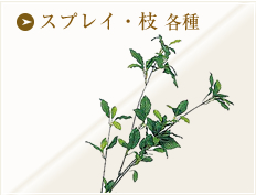 スプレイ・枝各種