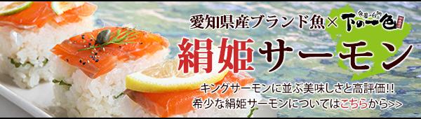愛知県産ブランド絹姫サーモン