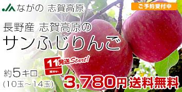 志賀高原のサンふじ