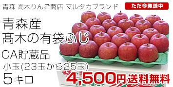 高木のふじりんご23-25玉