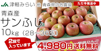 サンふじ大玉10キロ