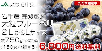 L750g化粧箱