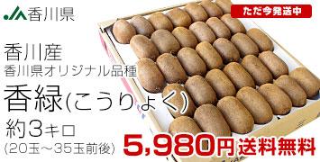 3キロ正規品