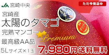 「太陽のタマゴ」最高級AA品 5Lサイズ×1玉