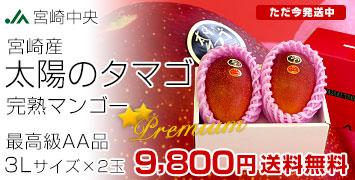 4「太陽のタマゴ」最高級AA品 3Lサイズ×2玉