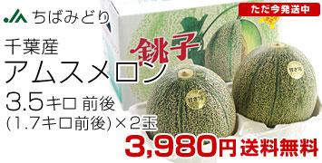 アムス2玉3.5キロ