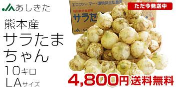 サラたまちゃん10kg