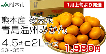 夢未来青島2L