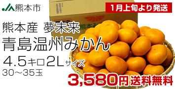 青島2L4.5kg