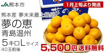 青島L5kg