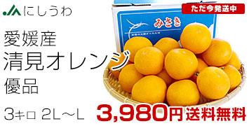 清見オレンジ3kg
