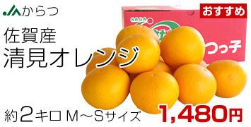 清見オレンジ MからSサイズ 2キロ