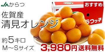 清見オレンジ MからSサイズ 5キロ