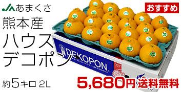 デコポン2L