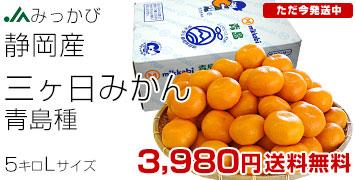 三ケ日みかんL 5キロ