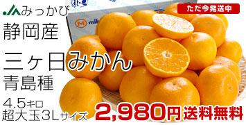 三ケ日みかん3L