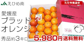 ブラッドオレンジ秀3キロ