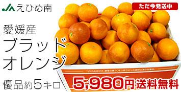 ブラッドオレンジ優5キロ