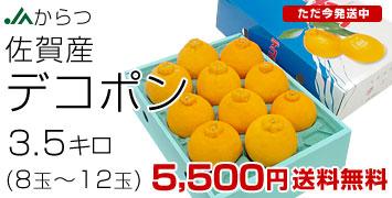 3.5キロ